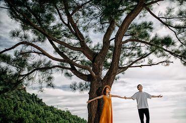 Trọn gói album cưới ngoại cảnh Đà Nẵng - Bà Nà Hill - Hệ thống cửa hàng dịch vụ ngày cưới ALEN - Hình 20