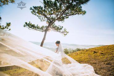 Album Đà Lạt - Nhi Dip Bridal - Hình 8