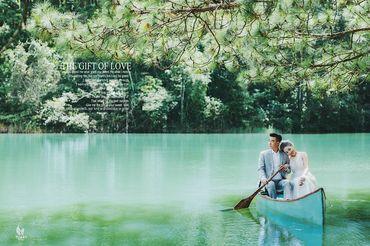 Golden - TuArt Wedding Đà Lạt - Hình 4