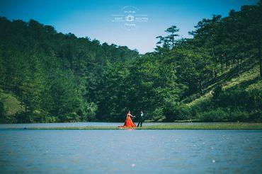 Album Ngoại cảnh Đà Lạt gói 4 - Chụp Ảnh Cưới Đẹp Đà Lạt Ohlala studio - Hình 3
