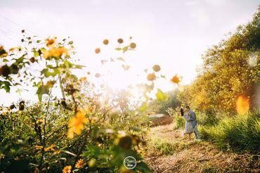 Chụp hình cưới lung linh tại Bảo Lộc - Bonjour Studio - Hình 22