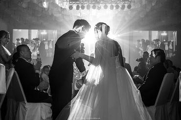 WEDDING JOURNALISM   THINH - TIEN - KEN weddings - phóng sự cưới - Hình 7