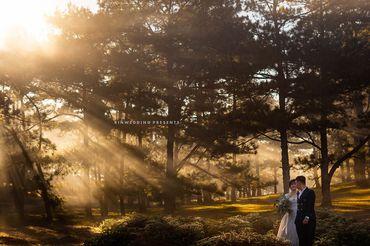 GÓI CHỤP ẢNH NGOẠI CẢNH ĐÀ LẠT - Rin Wedding Đà Lạt - Hình 8