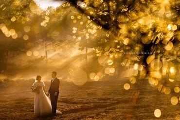 GÓI CHỤP ẢNH NGOẠI CẢNH ĐÀ LẠT - Rin Wedding Đà Lạt - Hình 9