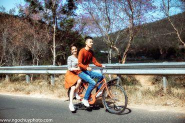 Chụp hình cưới ngoại cảnh ở Đà Lạt - Studio Ngọc Huy - Hình 1