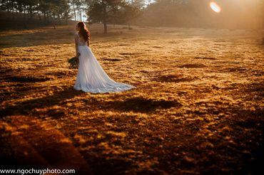Chụp hình cưới trọn gói tại Đà Lạt - Studio Ngọc Huy - Hình 8
