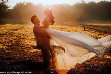 Chụp hình cưới trọn gói tại Đà Lạt - Studio Ngọc Huy - Hình 7