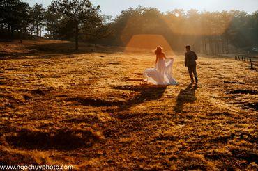 Chụp hình cưới trọn gói tại Đà Lạt - Studio Ngọc Huy - Hình 11