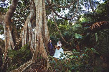 Chụp ảnh ngoại cảnh Đà Nẵng - T Wedding-Chụp Ảnh Cưới Đà Nẵng - Hình 3