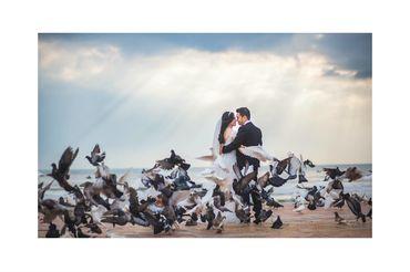 Chụp ảnh ngoại cảnh Đà Nẵng - T Wedding-Chụp Ảnh Cưới Đà Nẵng - Hình 1