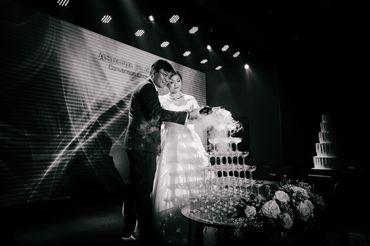 Trọn Gói Tiệc Báo Hỷ 7.000.000Đ - Annie Vy Wedding Studio - Hình 6