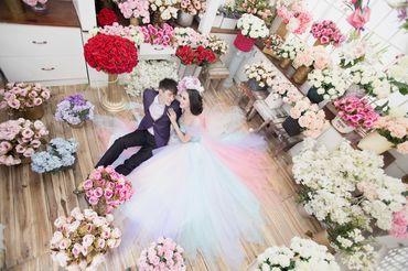 Ảnh cưới Phim Trường Jeju - Áo cưới Lucky Anh&Em - Hình 11