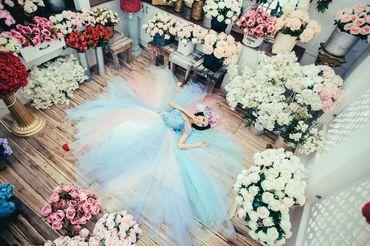 Ảnh cưới Phim Trường Jeju - Áo cưới Lucky Anh&Em - Hình 15