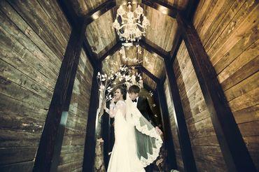 Ảnh cưới Phim Trường Jeju - Áo cưới Lucky Anh&Em - Hình 22