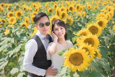 Album cưới lãng mạn tại Đà Lạt Tháng 12 khuyến mãi còn 10,800,000 - Jolie Holie - Hình 6