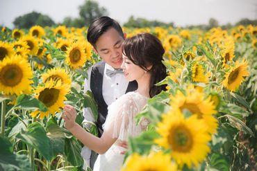 Album cưới lãng mạn tại Đà Lạt Tháng 12 khuyến mãi còn 10,800,000 - Jolie Holie - Hình 27
