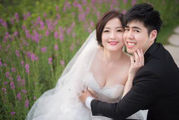 Album cưới lãng mạn tại Đà Lạt Tháng 12 khuyến mãi còn 10,800,000 - Jolie Holie - Hình 14