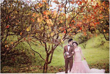 Ảnh cưới đẹp tại Đà Lạt - Trương Tịnh Wedding - Hình 8