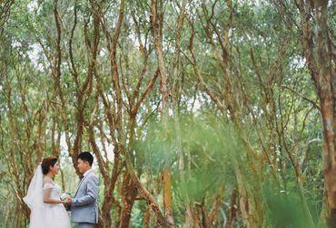 Sea Package (Hồ Cốc - Vũng Tàu / Phan Thiết - Cocobeach Camp / Vĩnh Hy) - Tony Wedding - Hình 3