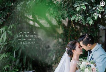 Sai Gon Package (Simple Concept / Phim Trường / Ngoại Cảnh SG) - Tony Wedding - Hình 15