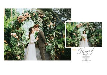 Phim trường HCM - Trương Tịnh Wedding - Hình 23