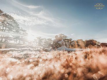 Chụp Album Cưới Đà Lạt chỉ với 12.500.000đ - Trương Tịnh Wedding - Hình 16