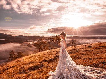 Đà Lạt - Thiên Đường Ảnh Cưới - Trương Tịnh Wedding - Hình 9