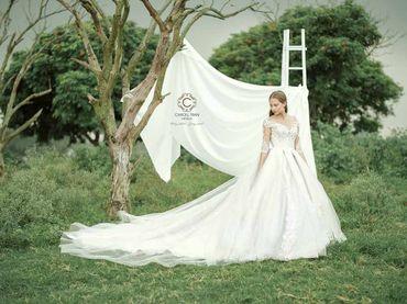 Cho thuê váy cưới dòng hàng xa xỉ couture WA71003S06 - Caroll Trần Design - Hình 4