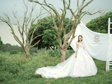 Cho thuê váy cưới dòng hàng xa xỉ couture WA71003S06 - Caroll Trần Design - Hình 5