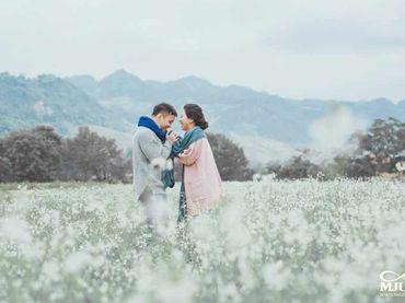 Chụp ảnh cưới Mộc Châu mùa lạnh - Chưa bao giờ dễ dàng hơn thế - Mju studio - Hình 15