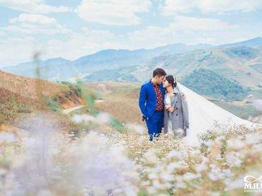 Chụp ảnh cưới Mộc Châu mùa lạnh - Chưa bao giờ dễ dàng hơn thế - Mju studio - Hình 3
