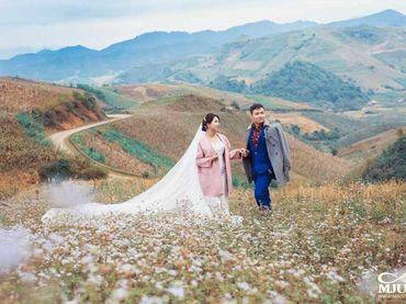 Chụp ảnh cưới Mộc Châu mùa lạnh - Chưa bao giờ dễ dàng hơn thế - Mju studio - Hình 5