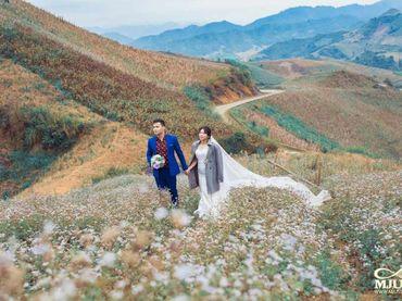Chụp ảnh cưới Mộc Châu mùa lạnh - Chưa bao giờ dễ dàng hơn thế - Mju studio - Hình 12