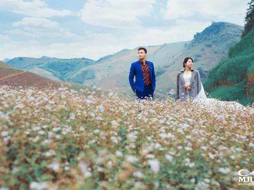 Chụp ảnh cưới Mộc Châu mùa lạnh - Chưa bao giờ dễ dàng hơn thế - Mju studio - Hình 11