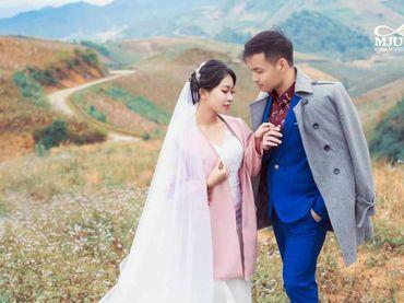 Chụp ảnh cưới Mộc Châu mùa lạnh - Chưa bao giờ dễ dàng hơn thế - Mju studio - Hình 7