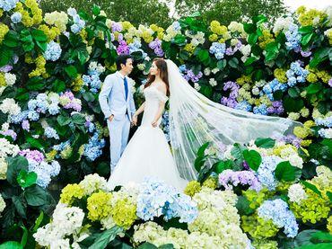Chụp ảnh cưới Phim trường - Big Eyes Studio - Hình 3