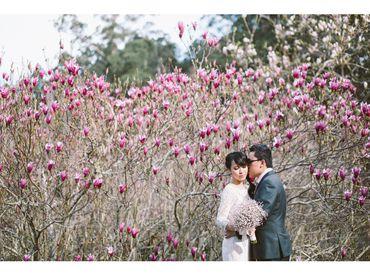 Gói chụp Phú Mỹ Hưng cơ bản - Hoa Ta Photo (wArtaPhoto) - Hình 1