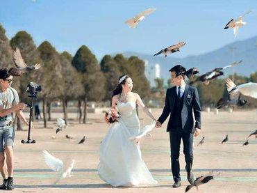 Gói phim cưới phóng sự - 2 máy - Mod Productions - Hình 7