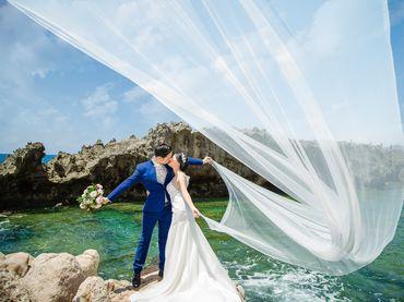 Gói chụp Hang Rái, Resort Sao Biển, Trại cừu Phan Rang Ninh Thuận - Vincente Studio - Hình 9