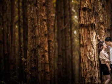 Gói chụp cao cấp Gold - Mykat Studio - Hình 8