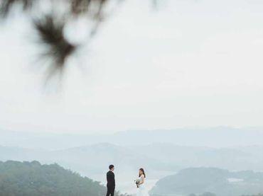 Ngoại cảnh Đà Lạt - Omni Bridal - Hình 12