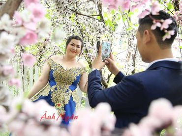 Áo cưới xanh ren vàng đồng - Áo cưới bigsize - Ánh Ngân - Hình 4