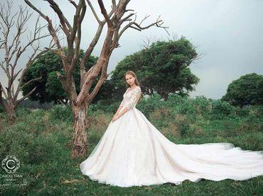 Cho thuê váy cưới dòng hàng xa xỉ couture WA71003S06 - Caroll Trần Design - Hình 7