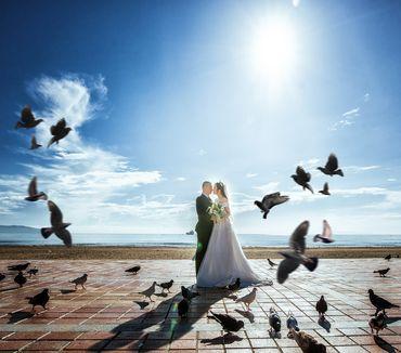 Tour Đà Nẵng – Hội An - SanSan Bridal - Hình 2