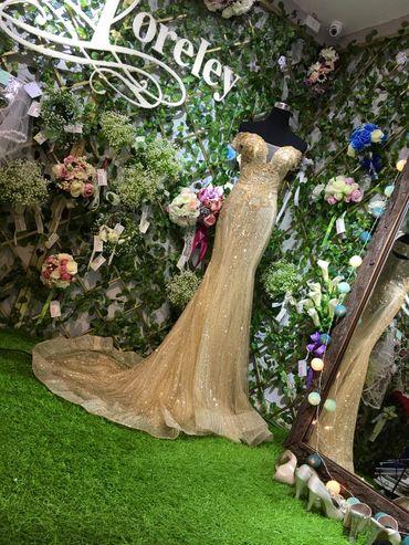 Album váy được nhiều cô dâu chọn nhất 2017 - Loreley Bridal & Prom - Hình 4