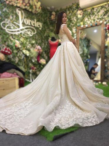 Album váy được nhiều cô dâu chọn nhất 2017 - Loreley Bridal & Prom - Hình 13