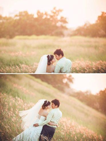 Chụp ảnh ngoại cảnh Đà Nẵng - T Wedding-Chụp Ảnh Cưới Đà Nẵng - Hình 4