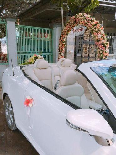 Cho thuê xe hoa - THẢO NGUYÊN WEDDING - Hình 5