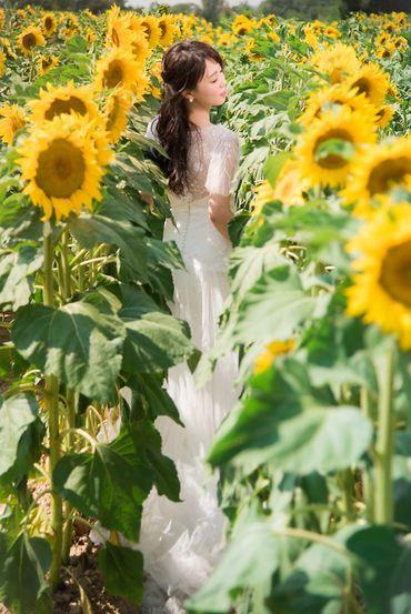 Album cưới lãng mạn tại Đà Lạt Tháng 12 khuyến mãi còn 10,800,000 - Jolie Holie - Hình 11