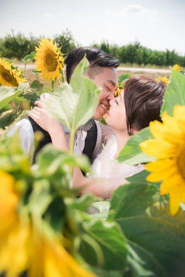 Album cưới lãng mạn tại Đà Lạt Tháng 12 khuyến mãi còn 10,800,000 - Jolie Holie - Hình 10